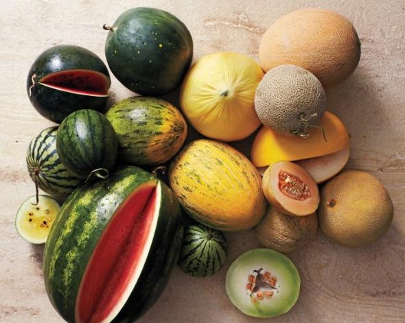 Дынная диета для похудения: отзывы
